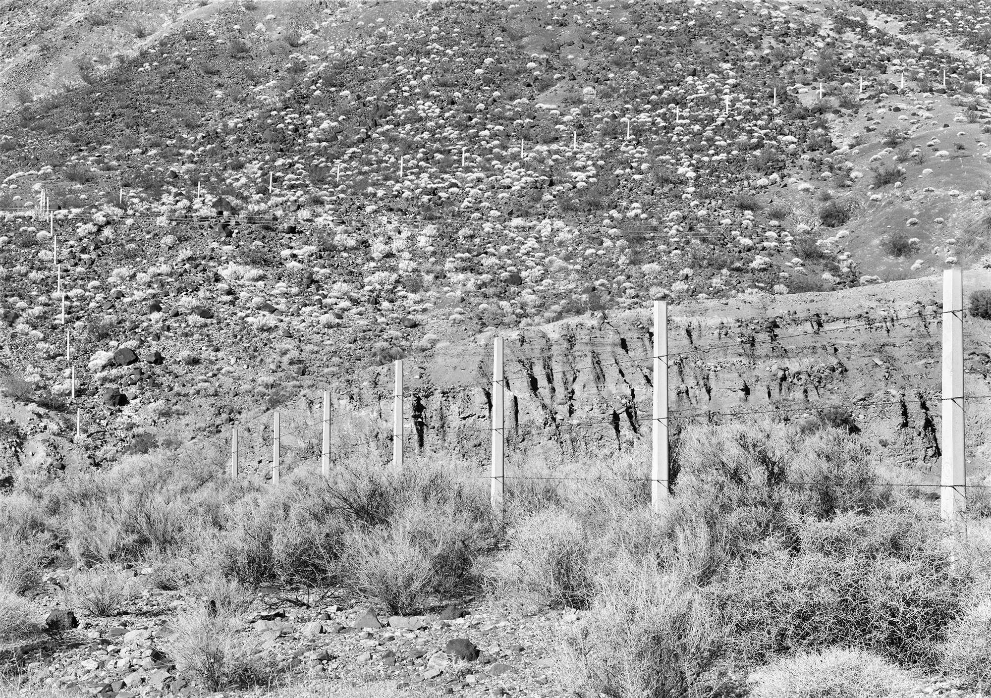 Fence Death Valley, California, USA, 1983