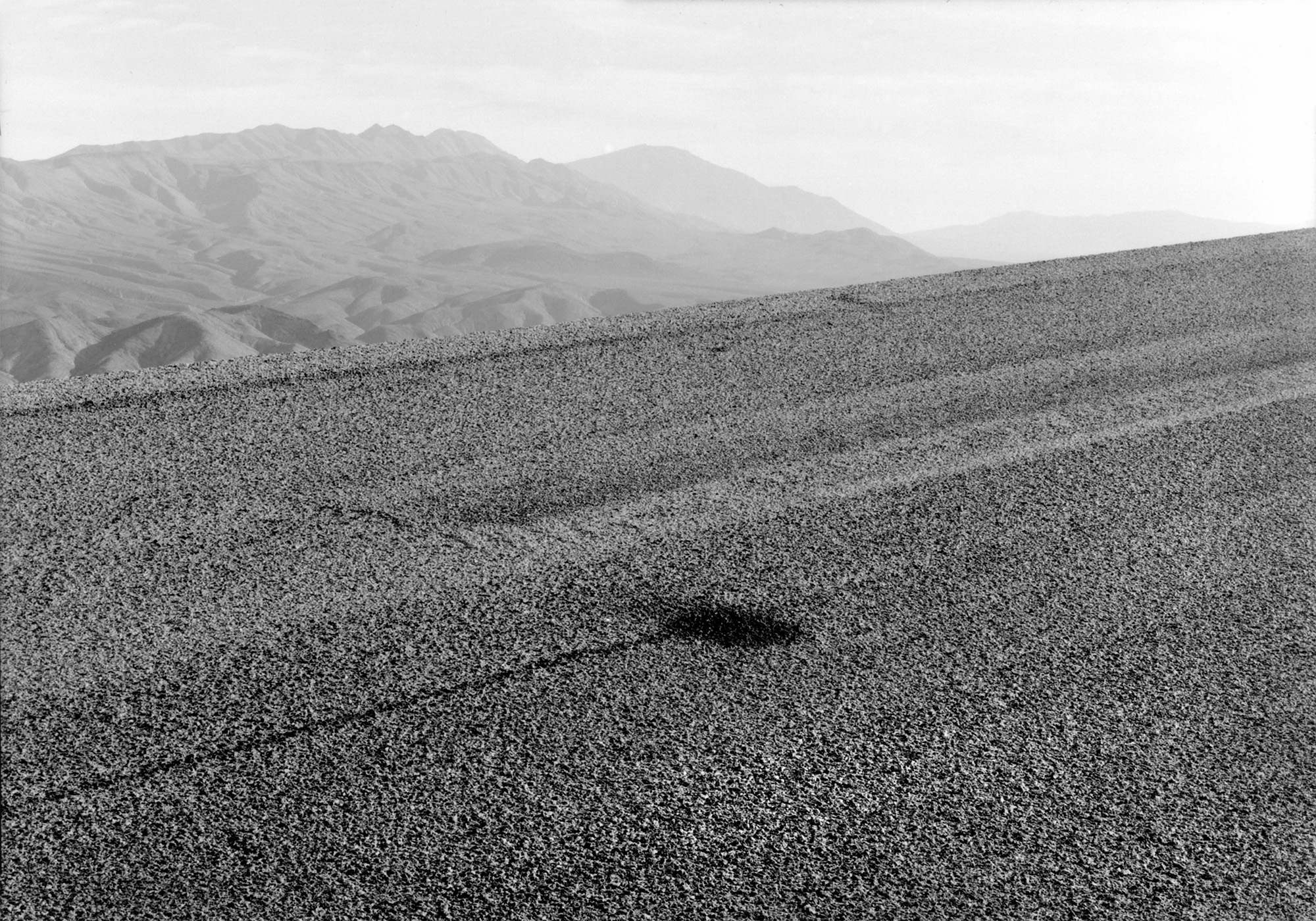 Panamint Range, California, 1981